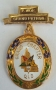 CODE 16/244P PAST PATRON JEWEL - GRAND CHAPTER - METAL GILT