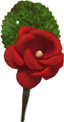Code 18/123 - SILK ROSE 18 DEGREE
